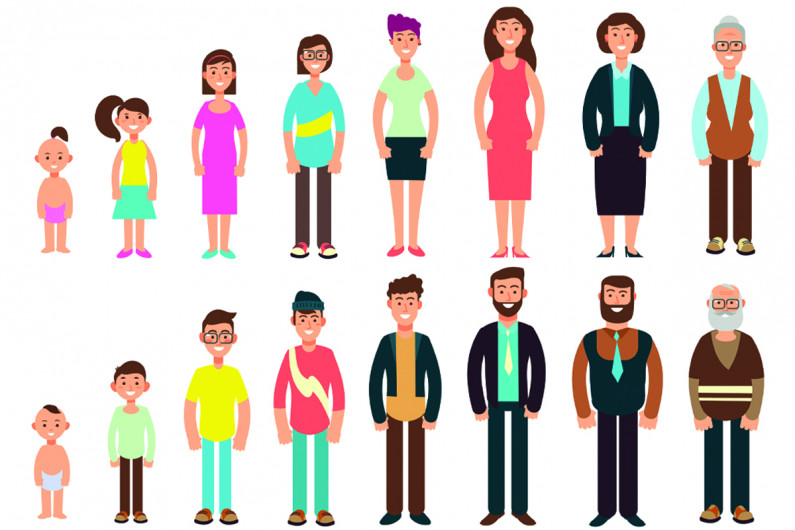 Illustration showing people of different ages standing next to each other from youngest to oldest