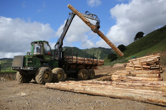 A worker operates a log forwarder in a plantation forest